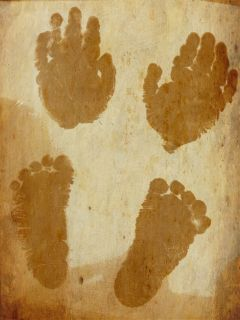 babyloss baby photostory emotions sepia people babyloss baby photostory