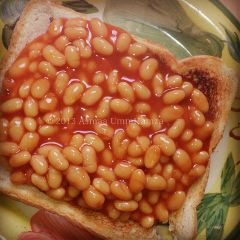 food simple beans toast