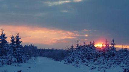nature snow winter sunset